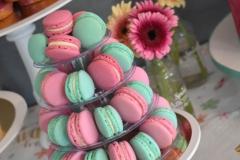 Macarons roze en mint groen