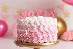 smash cake Sofia