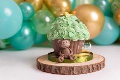 smash cake giant cupcake jungel