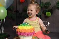 smash cake regenboog