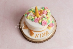 smash cake unicorn regenboog 1